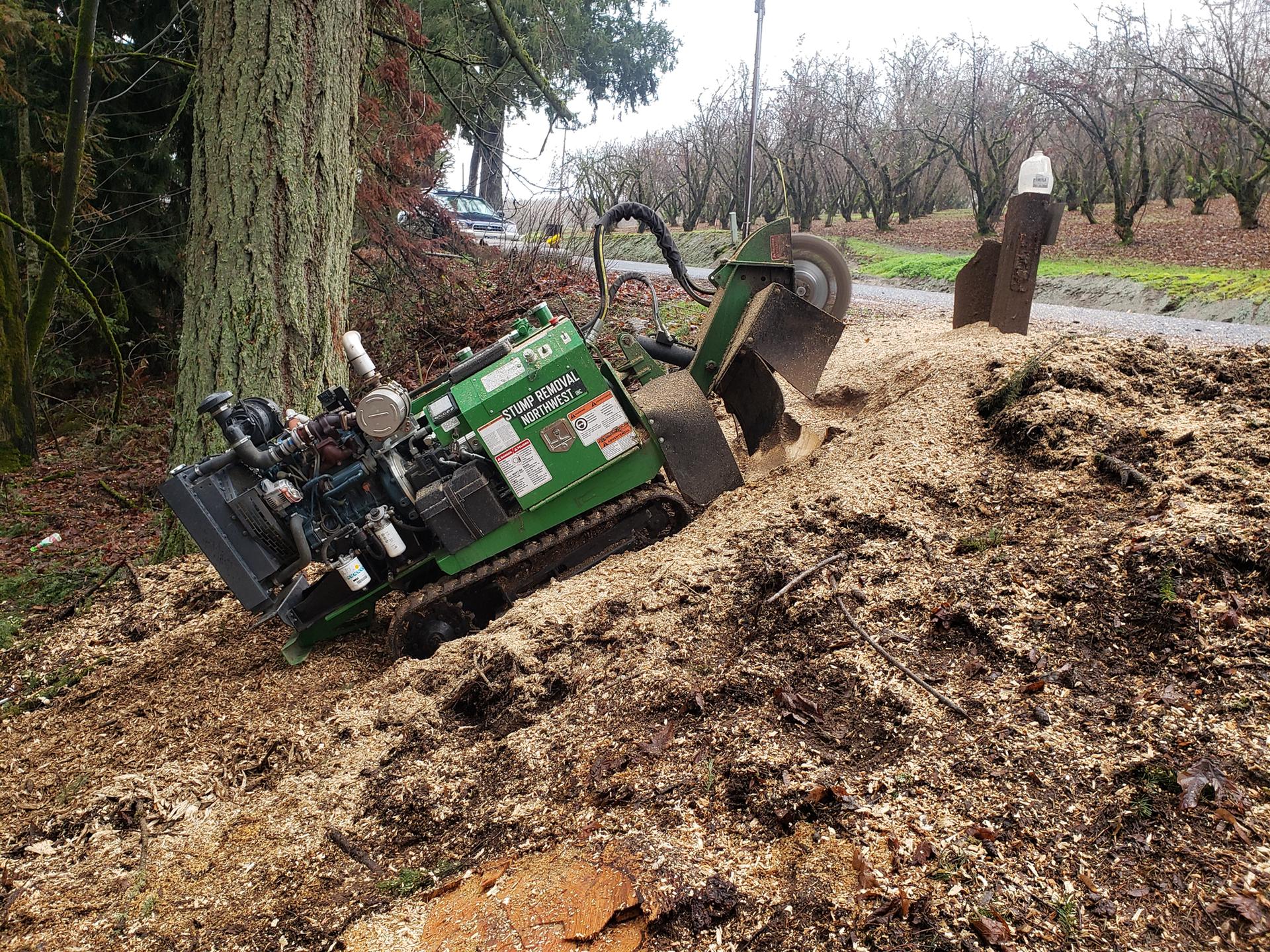 beaverton stump grinding
