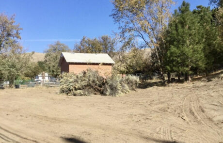 land clearing service