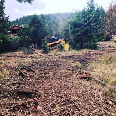 idaho land clearing